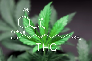 thc chemical composition of weed molecule