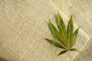 weed on fabric