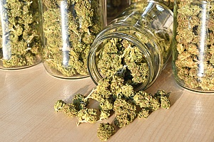 cannabis being stored in a jar to keep lasting long