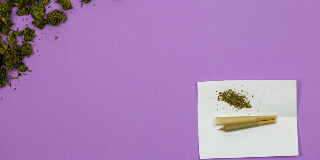 pre rolled cones sitting on purple background