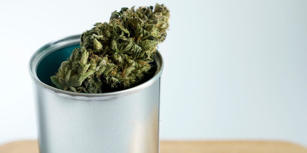 cannabis flower in a metal box